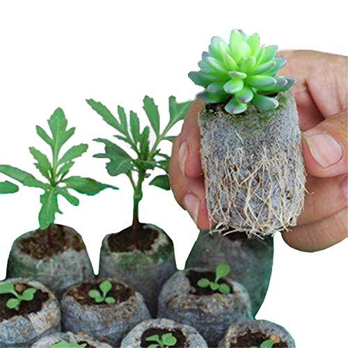 Lot de 200 sacs biodégradables non tissés pour pépinière, plantes et plantes