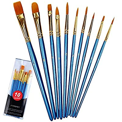 Acrylic Paint Brushes Set, Round Pointed Nylon Hair Paint Brush Set Fine Tip Miniature Paintbrushes for Acrylic Watercolor Oil Painting Face Nail Model Craft Detailing Rock Art, Artist Pro Kit