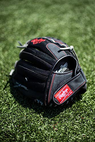 Rawlings Renegade Baseball/Softball Glove Series