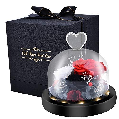Rosa Eterna Natural, Kit de Rosas La Bella y la Bestia, Elegante Cúpula de Cristal con Base Pino Luces LED, Decoración para Día de San Valentín Aniversario Bodas-Juego de Regalo