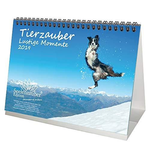 Tierzauber lustige Momente · DIN A5 · Premium Kalender/Tischkalender 2019 · Lustig · Freundschaft · Schnappschuss · Moment · witzig · Natur · Tiere · Edition Seelenzauber