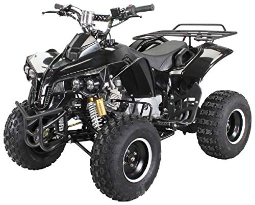 Kinder Quad Warrior (Benzin 125ccm)