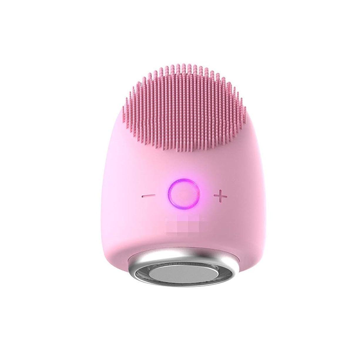 誤売上高ポゴスティックジャンプChaopeng 多機能美容器具洗浄器具導入器具凝縮ホットドレッシング肌活性化器具 (Color : ピンク)