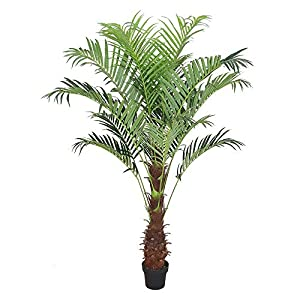 AMERIQUE Gorgeous Tech, w Gorgeous & Unique 6 Feet Phoenix Palm Artificial Plant Tree with Nursery Plastic Pot, Real Touch Technology, with UV Protection, Super Quality, 6′, Green