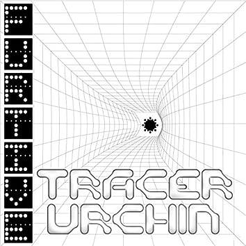 Tracer Urchin