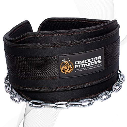 """DMoose Fitness Premium Dip Belt con Cadena Cadena de Acero Resistente de 36""""- Maximice Sus Entrenamientos de Levantamiento de Pesas y Culturismo con Duradero Dipping Belt"""