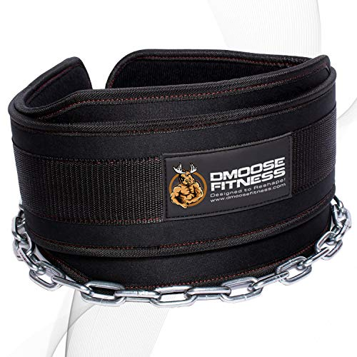 DMoose Fitness Dip Belt with Chain for Weightlifting, Pullups, Powerlifting, Crossfit, and Bodybuilding Workouts, Long Heavy Duty Steel, Comfortable Neoprene Waist Support (Black, Universal)