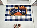 """Scarlett Arrow Outdoor Rug - Large Navy Blue & Cream Buffalo Checkered Floor Mat for Porch, Front Door, Kitchen & Bathroom - Washable Thick Plaid Hand-Woven Fabric - Trendy Home Decor - 27.5"""" x 43"""""""