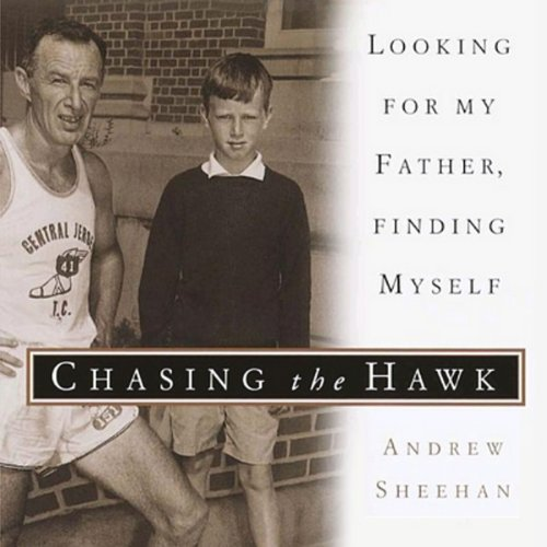 Chasing the Hawk cover art
