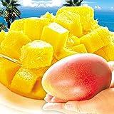 国華園 宮崎産 大玉アップルマンゴー 2玉 1組 南国フルーツ