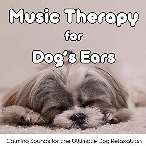 Relax My Dog Music