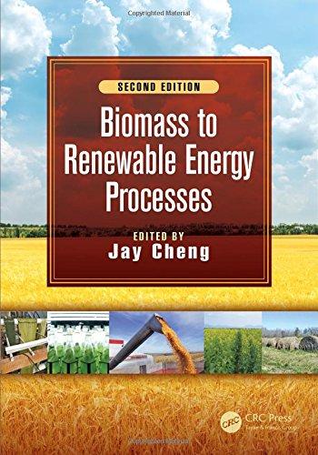 Biomass to Renewable Energy Processes