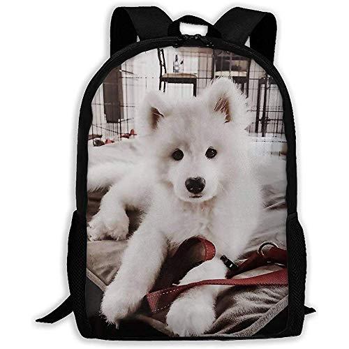 Großer Rucksack,Unisex-Schultertaschen,Freizeitrucksack,verstellbarer Rucksack College-niedlicher weißer Hund,Schlafsofa,Oxford-Reisetasche für Kinder,Schultasche für Erwachsene,Laptoptasche,Outdoor D