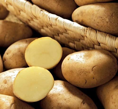 ジャガイモ・メークインの種芋 (2kg)