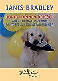 Hunde können beißen - aber Luftballons und Pantoffeln sind gefährlicher