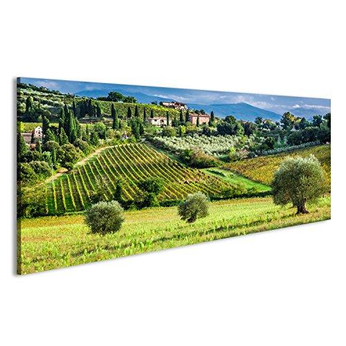 islandburner Bild Bilder auf Leinwand Weinberge und Olivenbäume in einem kleinen Dorf, Toskana Wandbild, Poster, Leinwandbild GVN