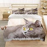 SLQL Juego de ropa de cama Anime Themed con diseño de gato con ojos rígidos, juego de 3 piezas, funda nórdica y 2 fundas de almohada de microfibra suave 135 x 200 cm