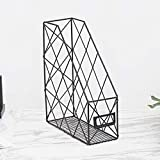 Wire File Desktop Storage Rack, Magazine File Holder, Wire File Holder Practical Hollowed Out Iron Grid Management for Office and Home