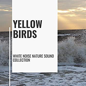 Yellow Birds - White Noise Nature Sound Collection