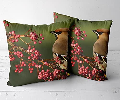 Funda Almohada Protectores de Almohada Juego de 2 piezas-16 x16-Funda de cojín, Almohada Decorativa para sofá, Coche, Cama y decoración de sillas.-Cedro 5