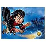 DIY 5d Diamond pintura Harry Potter Pintar por Numeros para Adultos Niños Pintura por Números con Pinceles Decoraciones para el Hogar Arts Craft 30x40 cm