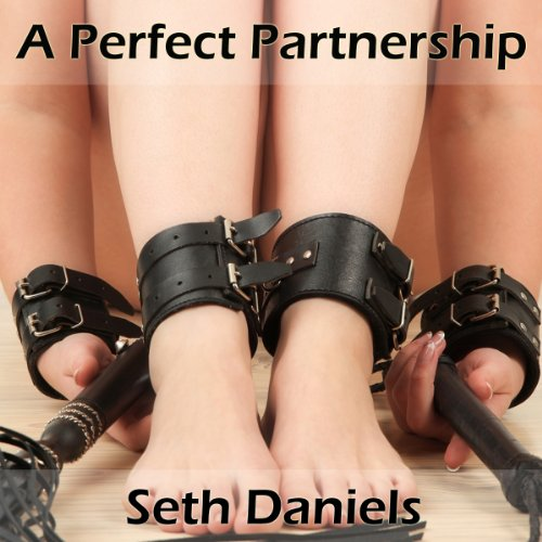 A Perfect Partnership cover art