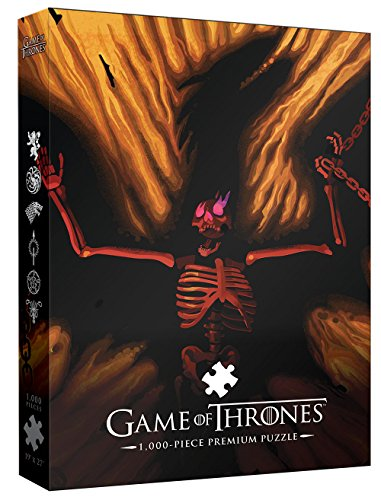 Game of Thrones Premium Puzzle: Dracarys 1000 Piece | A Beautiful Death Series Art Collectable Jigsaw Puzzles
