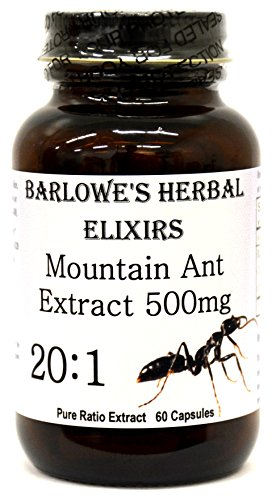 Mountain Ant Extract 20:1-60 500mg VegiCaps - Stearate Free, Bottled in Glass!