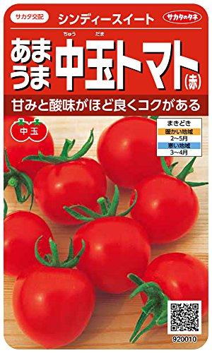 サカタのタネ 実咲野菜0010 あまうま中玉トマト(赤) シンディースイート 00920010