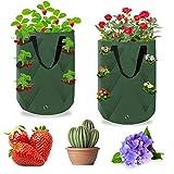 KATELUO Bolsa para Plantas, 2PCS Bolsas de Cultivo de Papa, Bolsa para Plantas en Tela no Tejida, Macetas de Tela con Asas y Transpirables, Bolsas para Flores y Verduras para Papas, Tomates y Fresas
