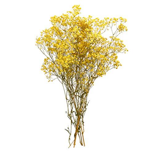 BESPORTBLE Flores Secas Gypsophila Bouquet Decoración Flores Artificiales Flores Preservadas Flores Secas Arreglos de Racimos Decorativos Hogar Oficina Boda Tienda (Amarillo)