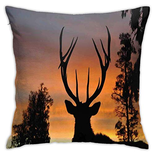 Throw Pillow Case Cushion Cover,Black Deer On Sky Background West Coast South Island New Zealand Nature ,18x18 Inches