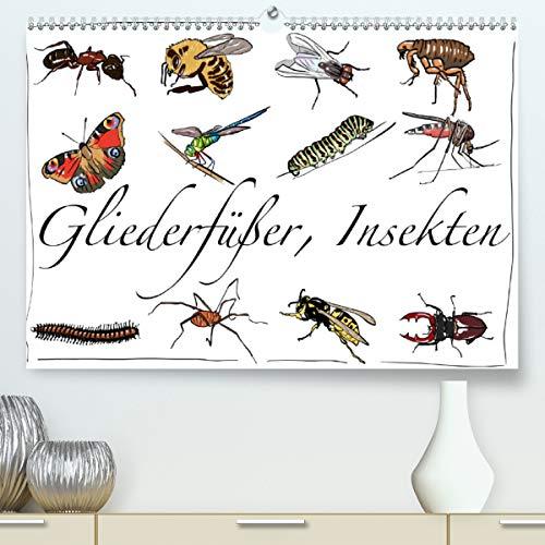 Gliederfüßer und Insekten (Premium, hochwertiger DIN A2 Wandkalender 2021, Kunstdruck in Hochglanz)