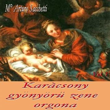 Karàcsony: gyönyöru zene orgona, vol. 1