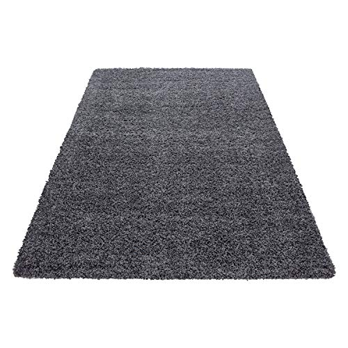Teppich Hochflor Shaggy Teppich Unicolor einfarbig Teppich farbecht Pflegeleicht, Maße:60 cm x 110 cm, Farbe:Grau