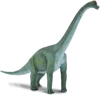 CollectA Prehistoric Life Brachiosaurus Toy Dinosaur Figure - Paleontologist Approved Hand Painted Model