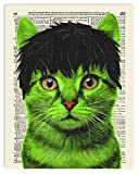 The Hulk Cat Superhero Kids Bedroom Wall Decor, Vintage Wall Art Upcycled Dictionary Art Print Poster For Kids Room Decor 8x10 inches, Unframed