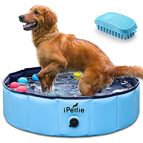 """iPettie Foldable Dog Pool, Collapsible Dog Pool, Dog Swimming Pools for Small Dogs, Kiddie Pool for Dogs, Cats & Kids, Blue, 32"""" x 8"""""""