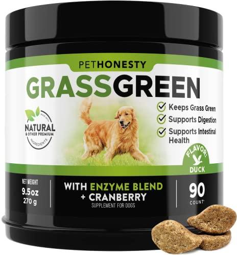 PetHonesty GrassGreen Grass Burn Spot Chews for Dogs - Dog Pee Lawn Spot Saver Treatment Caused by Dog Urine - Cranberry, Apple Cider Vinegar, DL-Methionine Grass Treatment Rocks - 90 Chews (Duck)