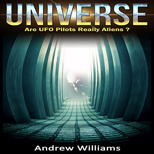 Universe: Are UFO Pilots Really Aliens? audiobook cover art