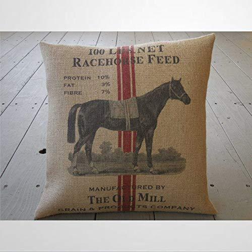 EricauBird Almohada de caballo de carrera, diseño de caballo de carrera, cuadrado, estilo shabby chic, para casa de campo, de caballo, funda de cojín de 30,5 x 50,8 cm