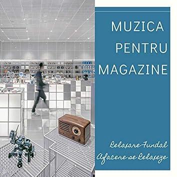 Muzica pentru Magazine - Relaxare Fundal Afacere se Relaxeze