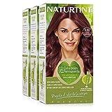 Naturtint Coloración 5.50 Caoba Chispeante, 100% Cobertura de canas, Ingredientes Vegetales y Aceites 100% Biobotánicos, Color Natural y Duradero, Sin Amoniaco, Pack de 3.