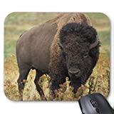 Drempad Gaming Mauspads Custom, Buffalo Mouse Pad 11.8'*9.8' Non-Slip Mouse Pads Rectangle Rubber Mousepad