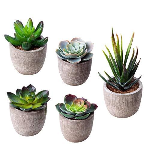 HB life 5 Piezas Plantas Suculentas Artificiales Plastico Maceta Decorativas, Plantas Artificiales Verdes para Casa, Cocina, Jardín Hogar Oficina Decoración