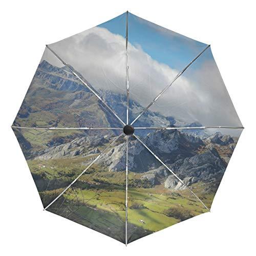 Paraguas de Viaje pequeño a Prueba de Viento al Aire Libre