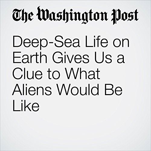 Deep-Sea Life on Earth Gives Us a Clue to What Aliens Would Be Like copertina