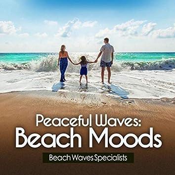 Peaceful Waves: Beach Moods