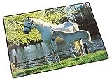 Läufer 46645 Schreibtischunterlage Pferd und Fohlen am See, 53x40 cm, rutschfeste Schreibunterlage für Kinder, verschiedene Motive, mit transparenter Seitentasche