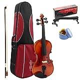 Theodore Theodore estudiante violín – principiantes 3/4 tamaño abeto parte superior